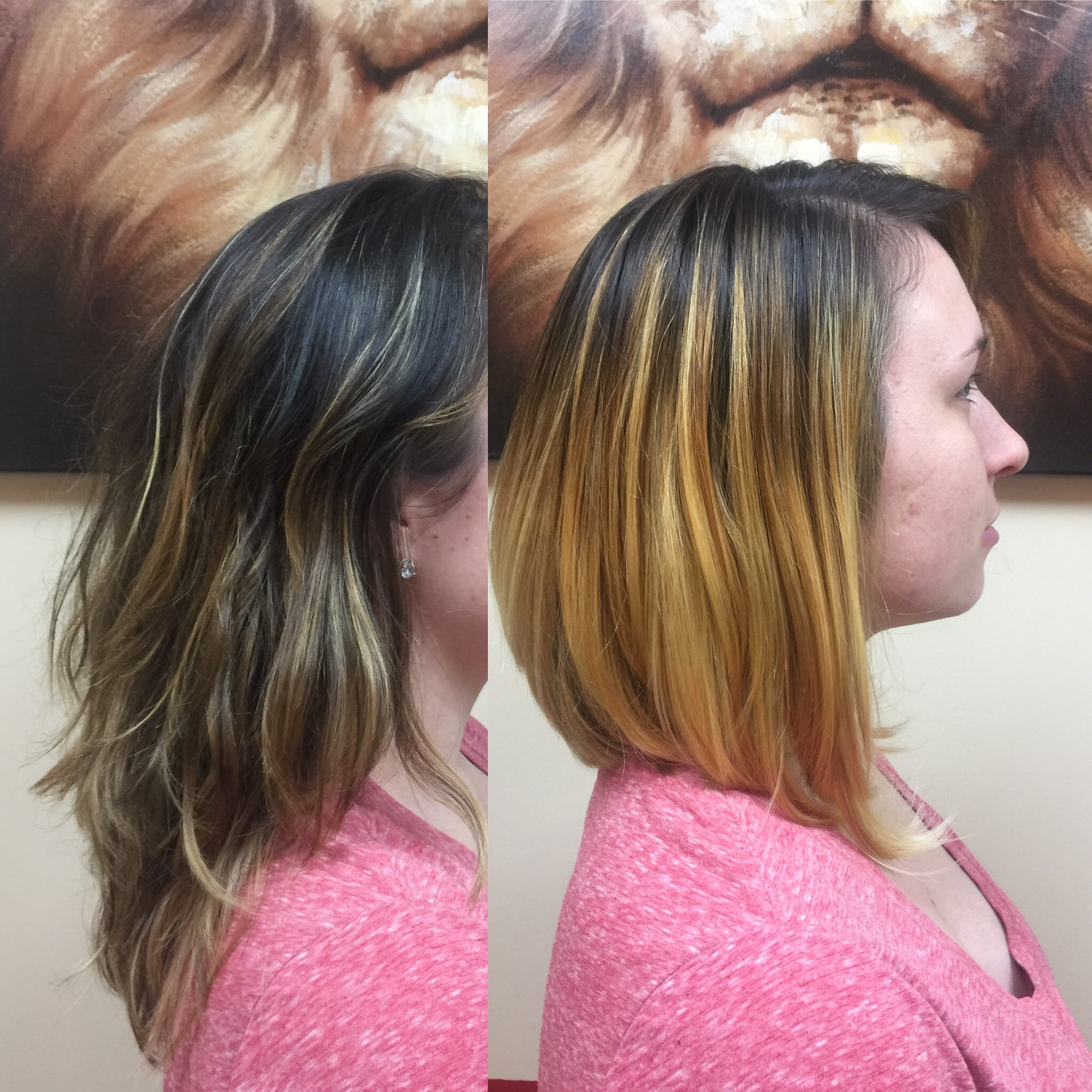 Highlights and Cut 0378