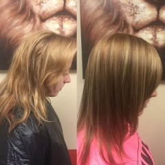 Highlights, Cut and Style 0277